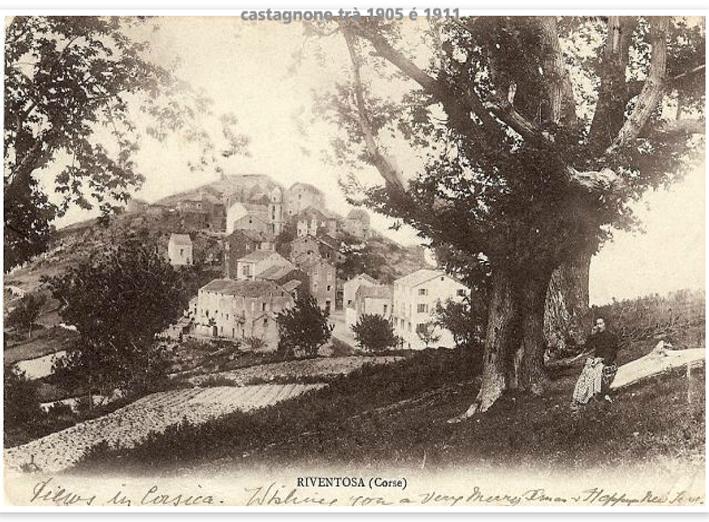 castagnone